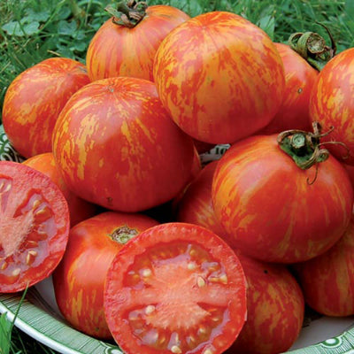 Seeds: Red Zebra Tomato
