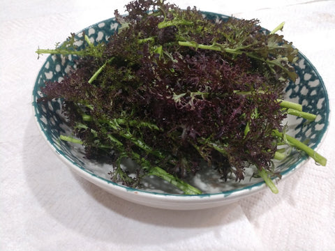 Mustard Greens-Red- 5 oz.