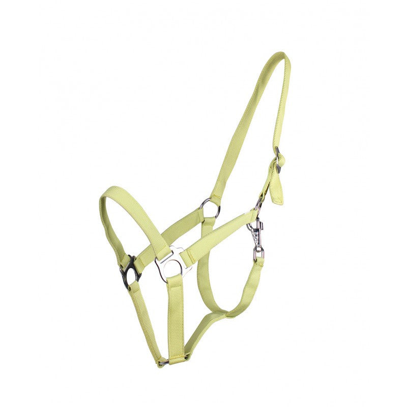 QHP Head Collar Slide Shetland / Light Green - Eqclusive  - 5