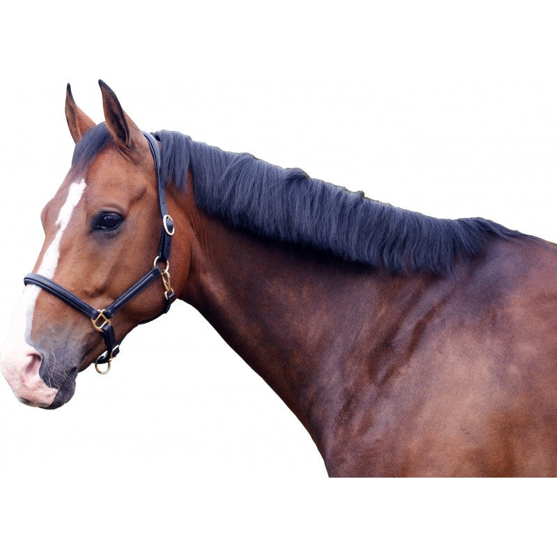 QHP Head Collar Leather Delicate  - Eqclusive  - 1