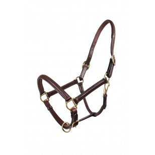 QHP Head Collar Leather Delicate  - Eqclusive  - 3