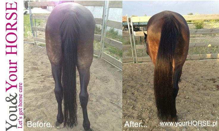YOU & YOUR HORSE wow... HIGH SHINE-3D Effect MANE 'N' TAIL CONDITIONER SPRAY  - Eqclusive  - 7