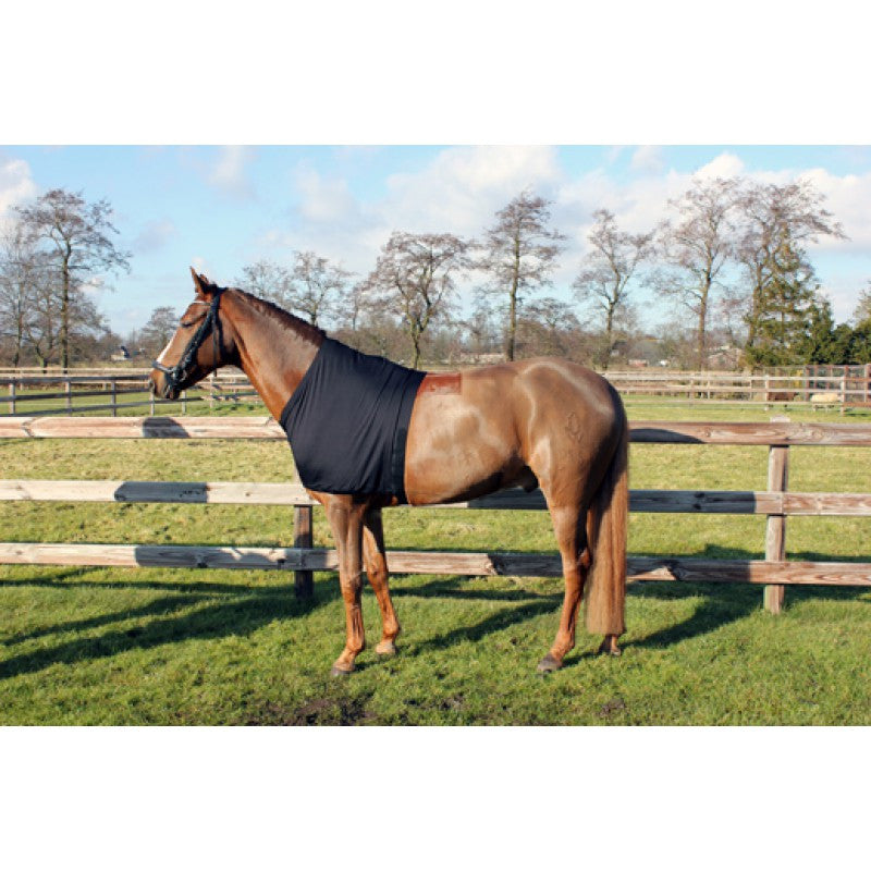 QHP Chestprotector Lycra S / Black - Eqclusive