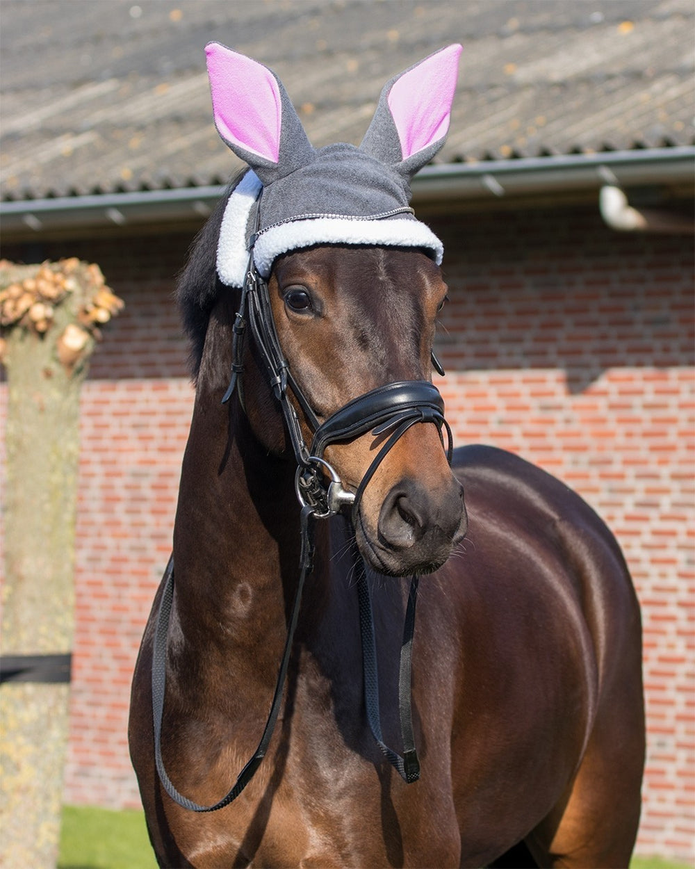 Easter bunny ears hat horse