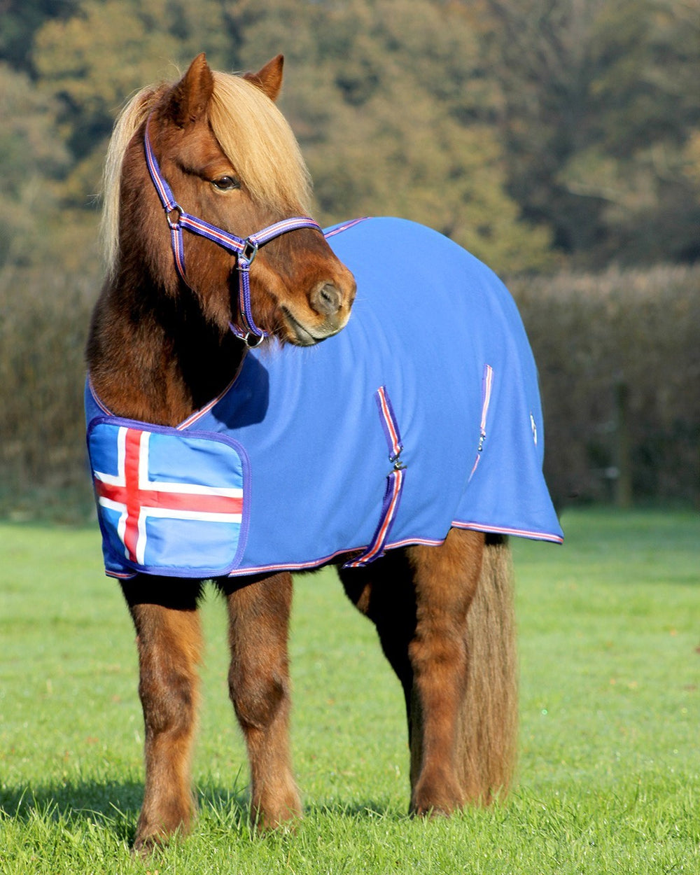 QHP Fleece Rug Icelandic