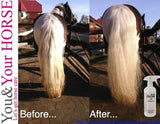 YOU & YOUR HORSE wow... HIGH SHINE-3D Effect MANE 'N' TAIL CONDITIONER SPRAY  - Eqclusive  - 6