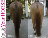 YOU & YOUR HORSE wow... HIGH SHINE-3D Effect MANE 'N' TAIL CONDITIONER SPRAY  - Eqclusive  - 4