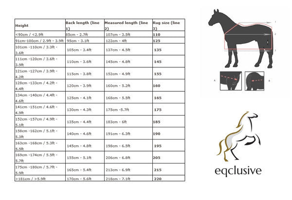 QHP Turnout Sheet Fixed Neck 300gr  - Eqclusive  - 4