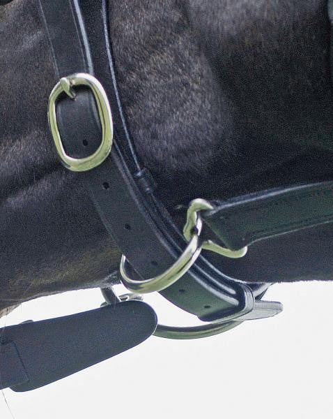BUSSE Hacking Bridle SOLIBEL  - Eqclusive  - 2