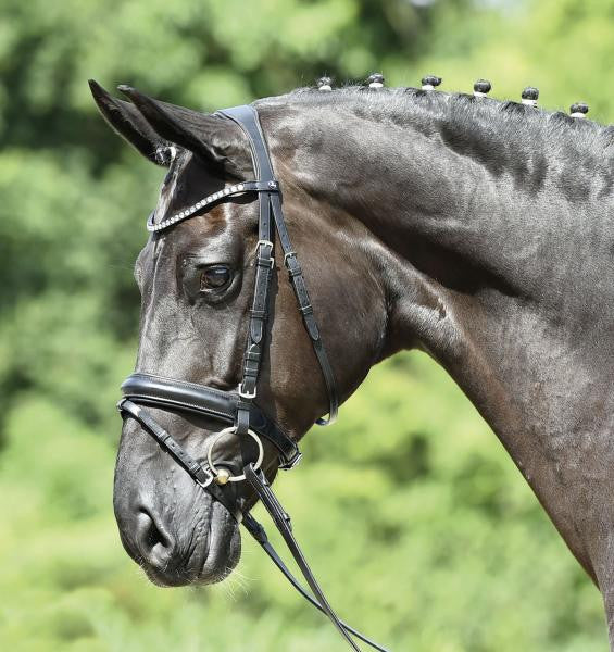 BUSSE Bridle MATERA Cob / Black/Crystal - Eqclusive  - 1