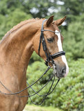 BUSSE Double Bridle MAILAND Cob / Black/Varnish-Diamond - Eqclusive  - 1