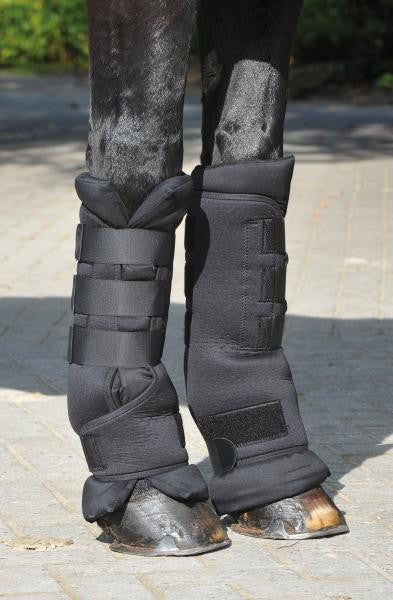 BUSSE Stable Boots PROTECT S / Black - Eqclusive
