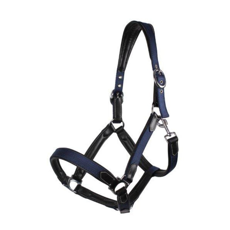 QHP Head collar Combi Pony / Navy - Eqclusive