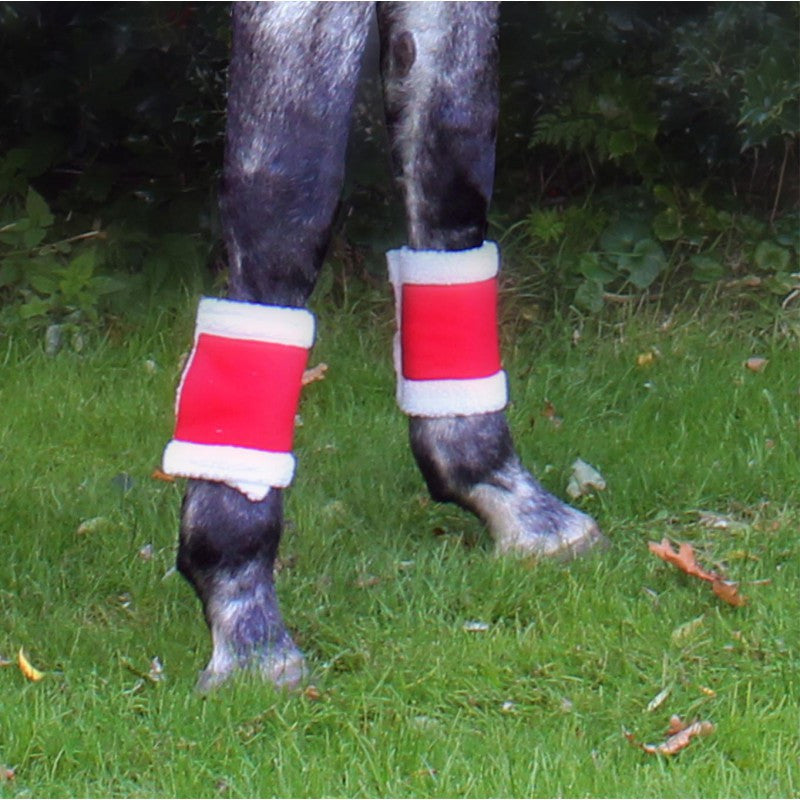 QHP Bandages Christmas Red - Eqclusive  - 2