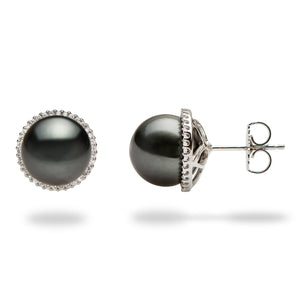 Tahitian Black Pearl Earrings in 14K White Gold (10-11mm) 006-14764