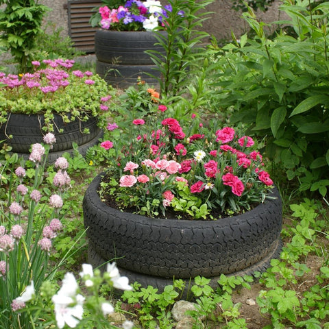 Red and pink flowers in a tire planter garden