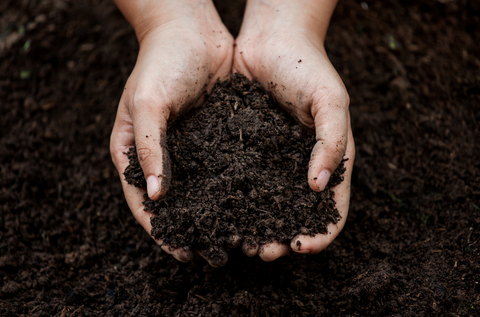 Person holding soil in hands