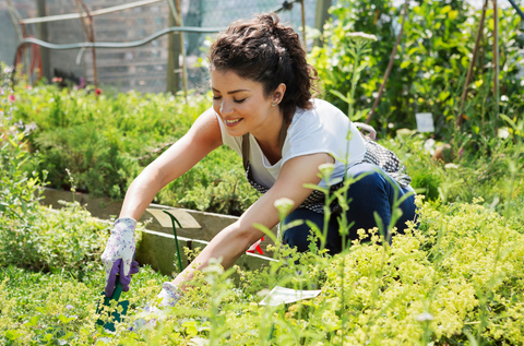 Woman in gray t shirt and pony tail gardening with a shovel