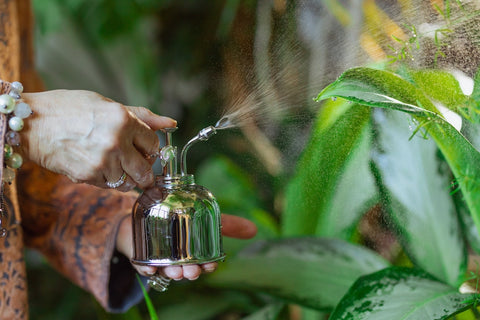 Homemade Insecticide Using Essential Oils