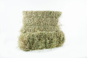 1st cut Timothy/ Orchard Grass Hay