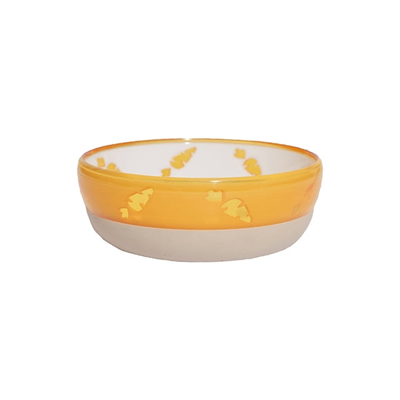 Translucent Carrot Bowl
