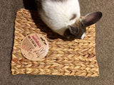 Chill N Chew Mat