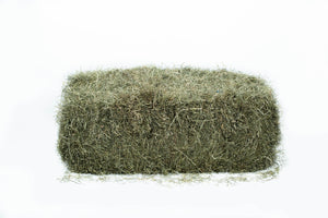 2nd Cut Farmers Secret Blend Hay
