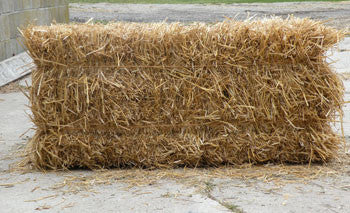 Wheat straw - treated (fire resistant) and untreated!