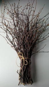 White Birch Twigs, Sticks & Chunks - All Natural!