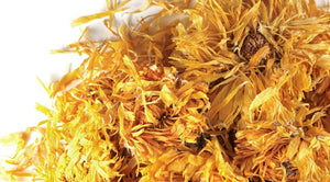 Marigold (Calendula) flower - Dried - All Natural!