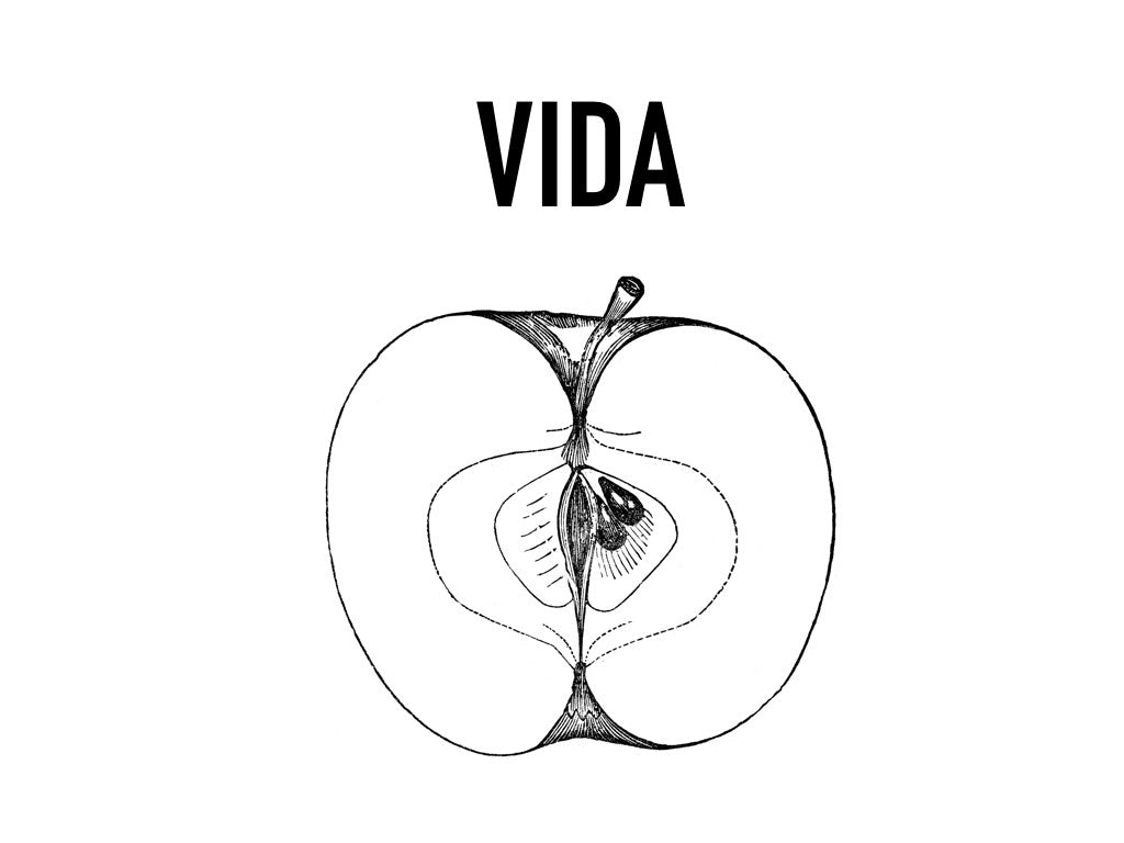 "VIDA ""LIFE"" LONG SLEEVE"