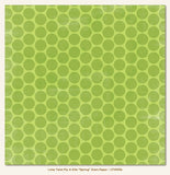 "My Mind's Eye LIME TWIST SPRING STAR 12""X12"" Cardstock Paper - Scrapbook Kyandyland"
