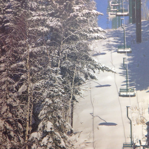 "McRice Photo SKI LIFT  12""X12"" Sheet - Scrapbook Kyandyland"