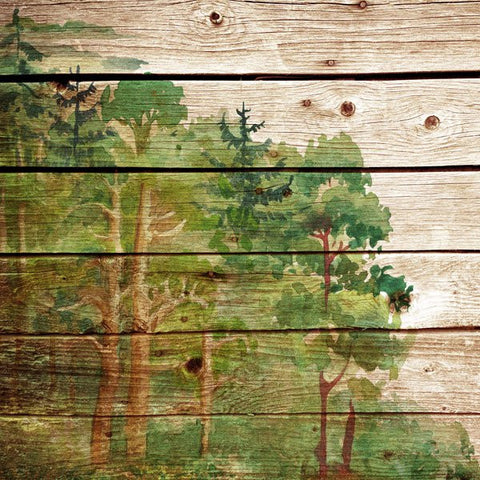 "WOOD PLANK FOREST 12""X12"" Scrapbook Paper"