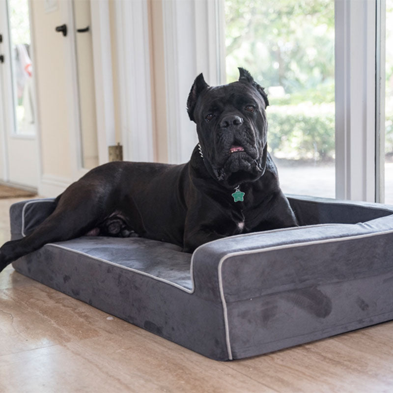 3-Sided Bolster Bed