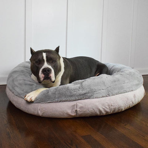 Orthopedic dog bed for dogs with hip dysplasia