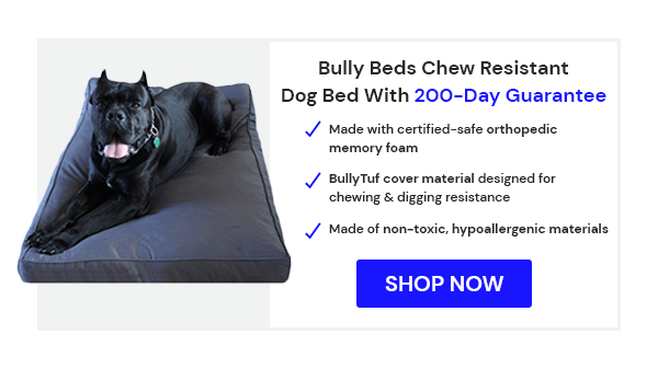Bully Beds Chew Proof Dog Bed - 200-Day Guarantee
