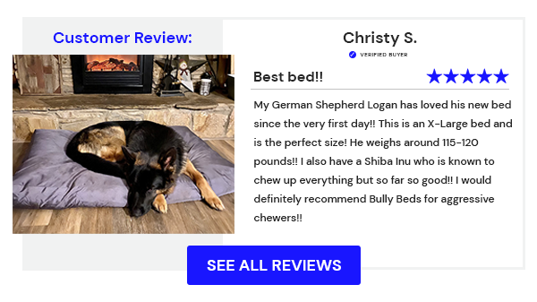Chew Proof Dog Bed - Customer Review