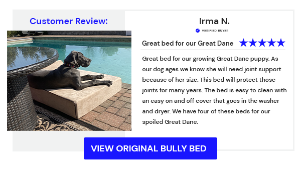 Bully Beds - Customer Review