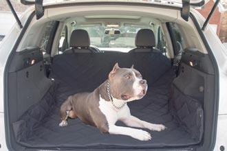 Car Seat Covers & SUV Cargo Liners Dog
