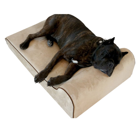 Big Dog Bed