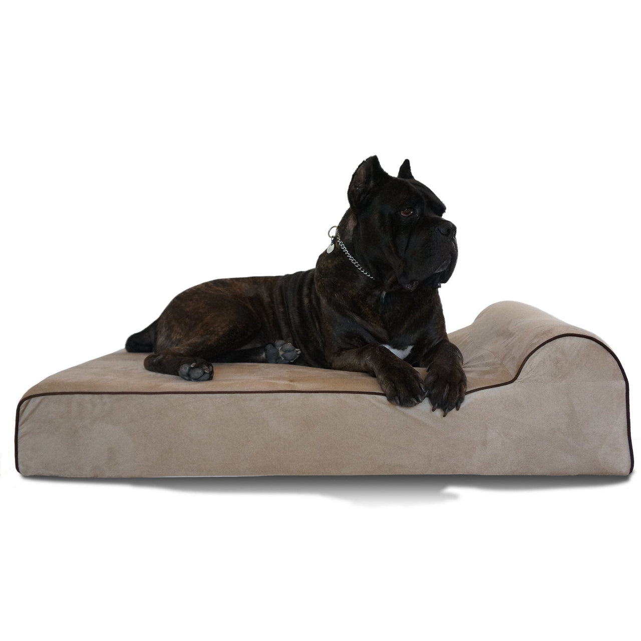 "Bully Bed Orthopedic, Washable & Waterproof Big Dog Beds Bully Bed bullybeds.com Large $179.99 - 48""x30""x7"" Tan"