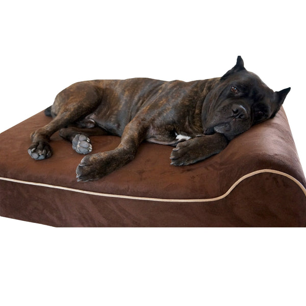 "Bully Bed for Small Dogs Bully Bed bullybeds.com Medium $119.99 34""x22""x4"" Chocolate"