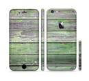 The Wooden Planks with Chipped Green Paint Sectioned Skin Series for the Apple iPhone 6/6s Plus