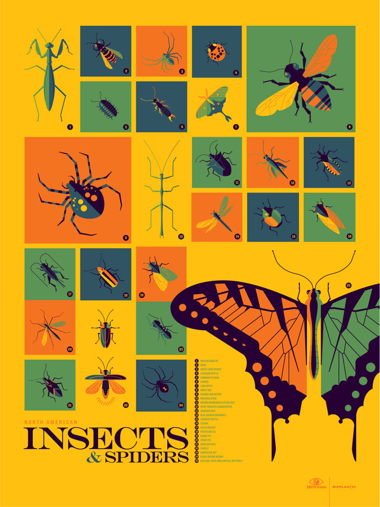 Insects and Spiders Infographic Poster by Tom Whalen