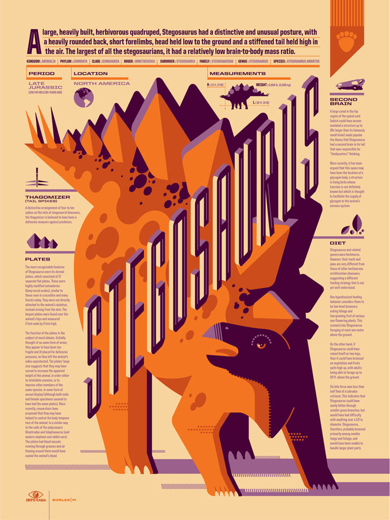 Stegosaurus Infographic Poster by Tom Whalen