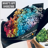 Giant Rainbow Babybreath Bouquet (FD