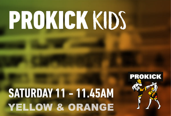 ProKick Kids Yellow & Orange will be back at the ProKIck Gym in Wilgar St @11am the 29th May.