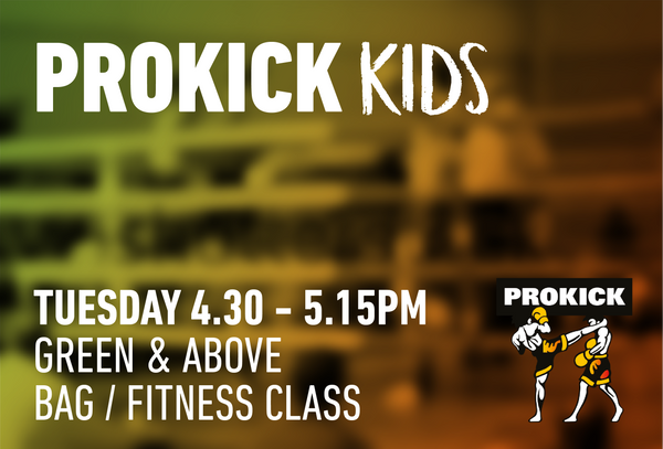 Kids Bag training Class - this class is suitable for kid orange belt and above. Must have own boxing gloves.