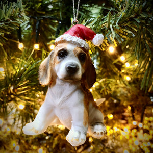Beagle with Santa Hat